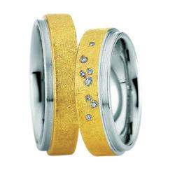 Steel Gold Six